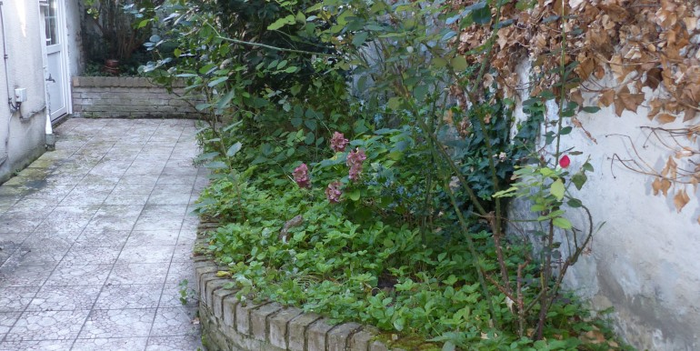 canis rue schoddyn (8) [AGDUNES]