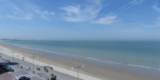 Magnifique T6 vue mer